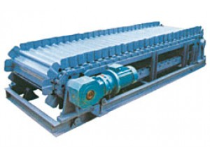 LDG chain plate scale